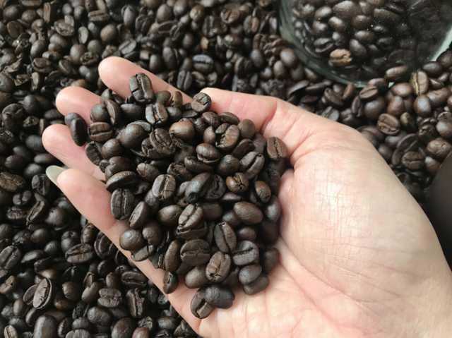 コーヒー豆を持つ人の手