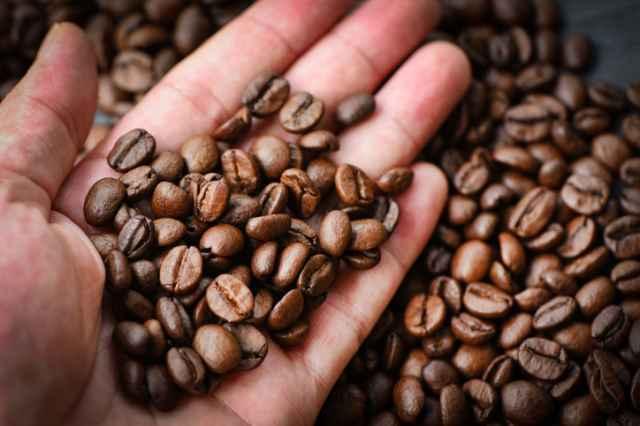 コーヒー豆を手にする人