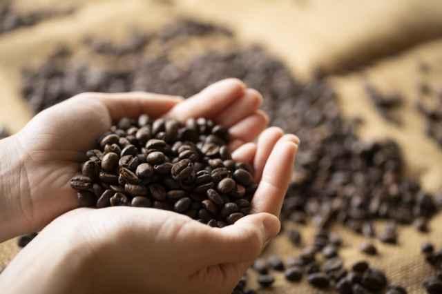 鮮度の良いコーヒー豆